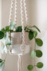 Macrame Hanger with Rings