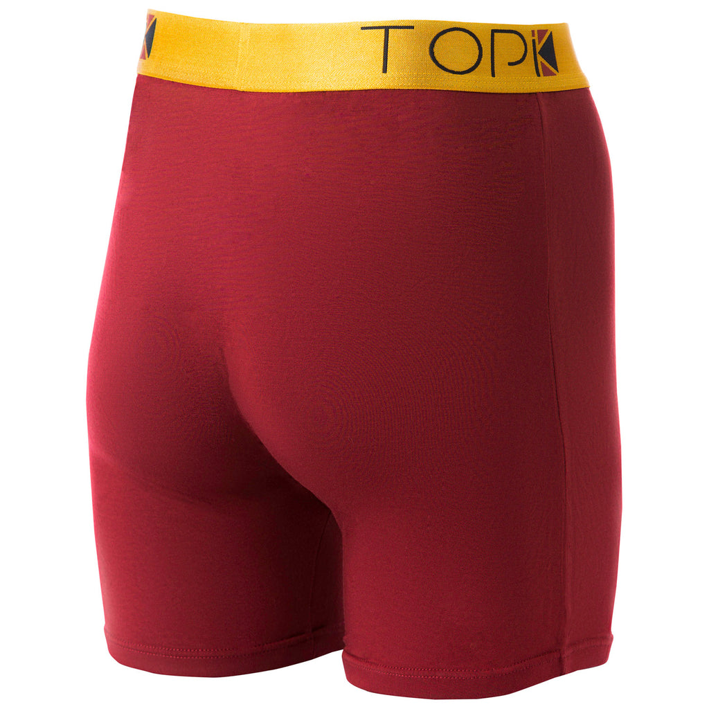 Back of burgundy TOPIK boxer briefs with gold waistband.