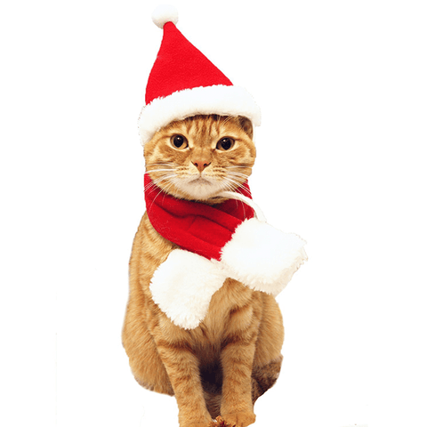 Sale We Love Cats - We Love Cats. Christmas Cat Hat  sc 1 st  We Love Cats & Cat Costumes u2013 We Love Cats