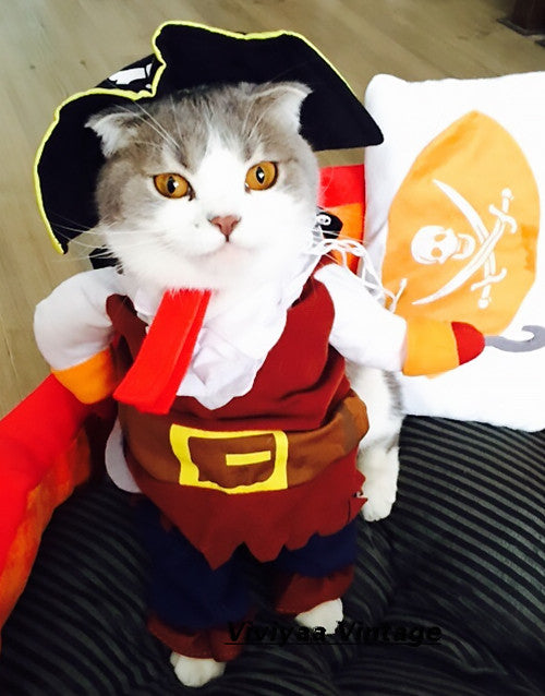 5de4d252dfb Pirate Cat Costume – We Love Cats