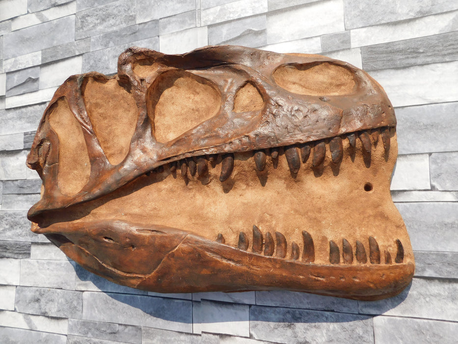 Allosaurus Skull Replica for sale fromThe Prehistoric Store in Fossil Brown