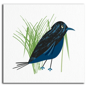 Blackbird Canvas Wrap