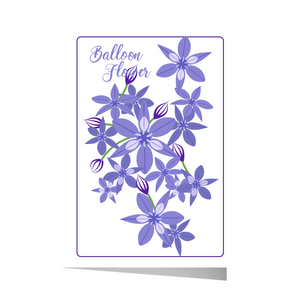 Balloon Flower Greeting Card