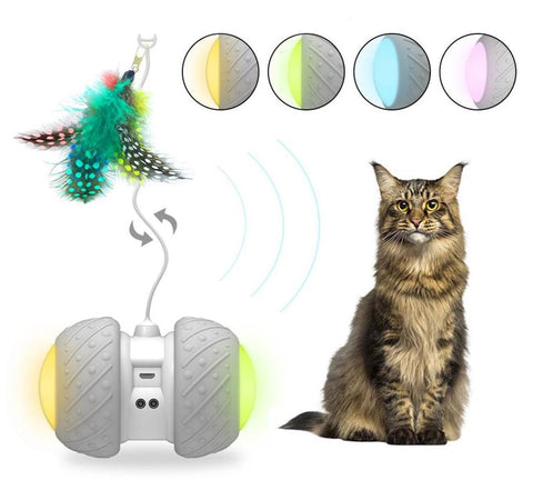 Smarty Cat Mini Rover Cat Nip Playmate