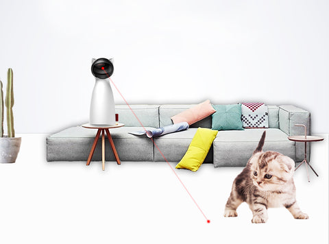 Smarty Cat LED Laser Playmate