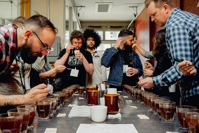 Coffee Cupping at Victrola Seattle