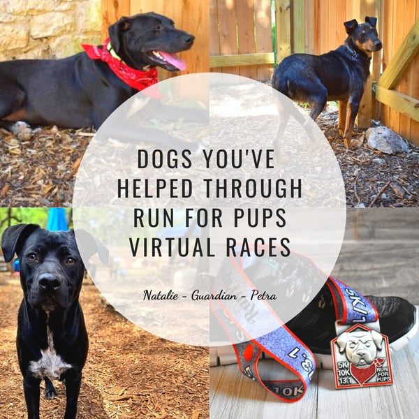 Dogs helped through run for pups virtual races_three black dogs_race medal