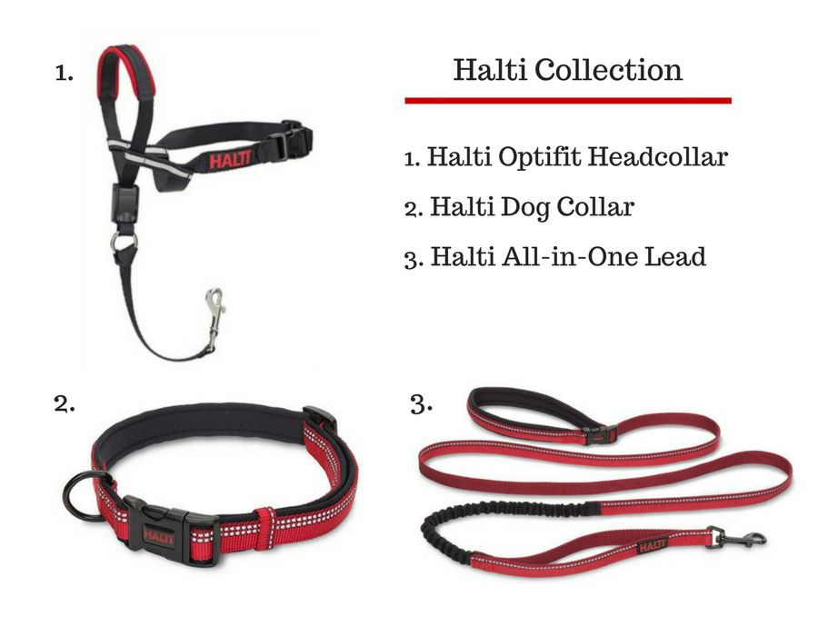 Halti Collar_Halti Leash