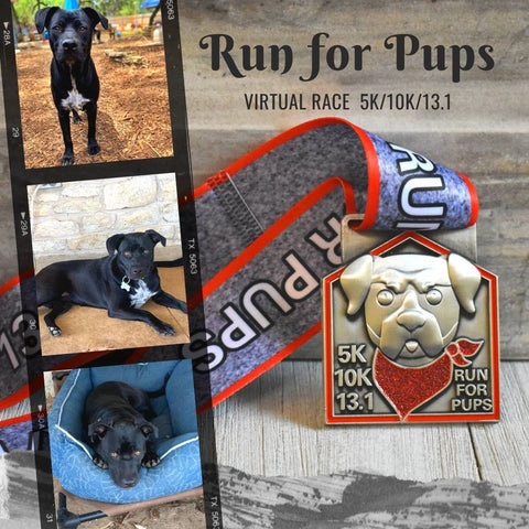 run for pups race medal_featuring Petra_black dog