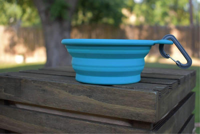 Collapsible dog bowl blue