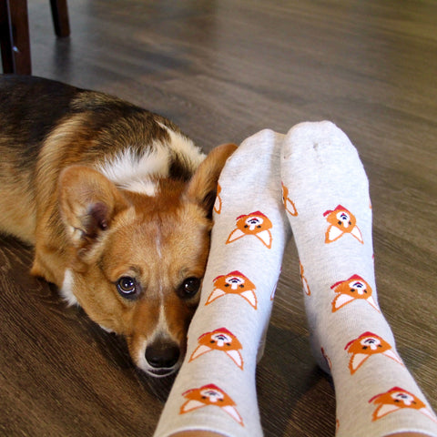 BARX SOX Grey Corgi Socks - Matching Dog
