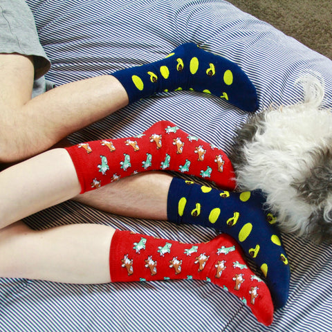 BARX SOX Red Corgi Socks with Blue Dachshund Socks