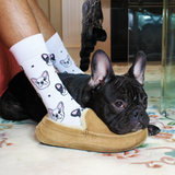 BARX SOX White Frenchie Socks - Matching Dog