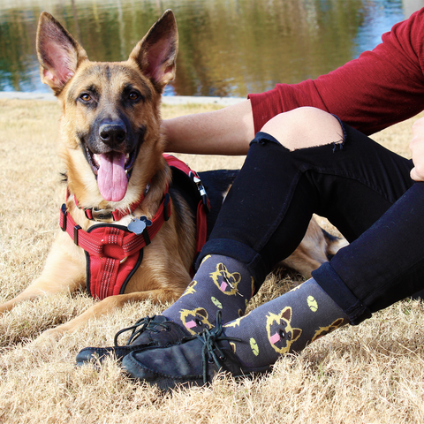 BARX SOX Grey German Shepherd Socks - Matching Dog