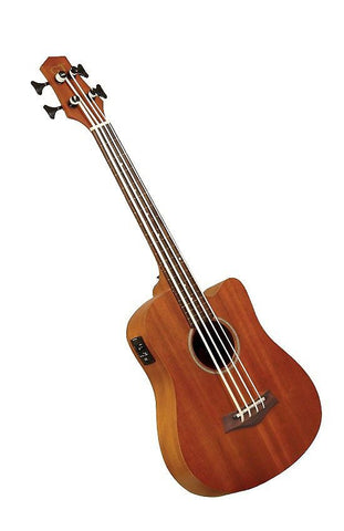 "Gold Tone M-Bass Micro Bass 25"" Scale Fretless Acoustic with Gig Bag"