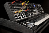 Moog MiniMoog Voyager XL Tolex Black Tolex Ltd Edition , Keys, Moog, Texas Guitar Ranch - Texas Guitar Ranch