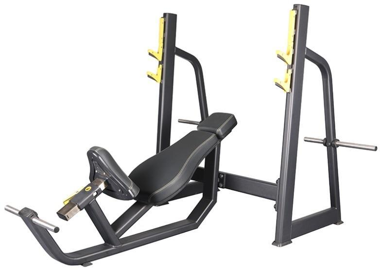 Body-Iron Platinum Incline Bench Press