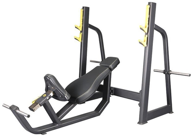 Body Iron Platinum Commercial Fixed Incline Bench Press (Almost Sold Out