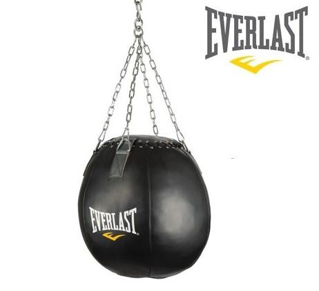 Everlast Wrecking Ball