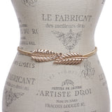 Charming Women's Gold Metal Elastic Waistband Belt