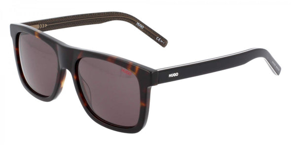 Hugo Boss HG 1009/S Acetate Sunglass For Men