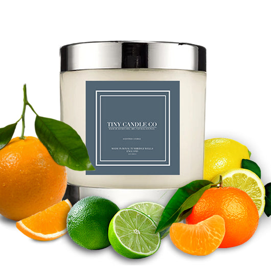 wonderful soy white candle surrounded by citrus fruits - Citrus Grove - Tiny Candle Co