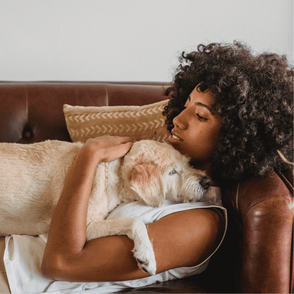10 Ways to Celebrate National Love Your Pet Day