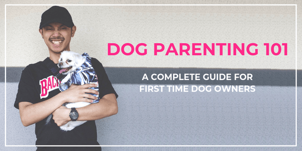 How to prepare for a puppy, Dog parenting 101, how to prepare for a dog, things to know before getting a dog