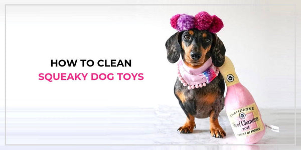 How to Clean Squeaky Dog Toys and When to Throw Them Out