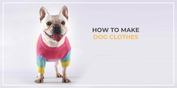 How to Make Dog Clothes With Things You Have At Home