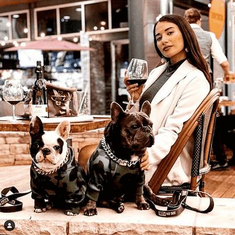 Napoleon and Ophelia behaving incredibly well while wearing the Shark Monster Dog Hoodie in Green Camo and Cuban Links in Silver.