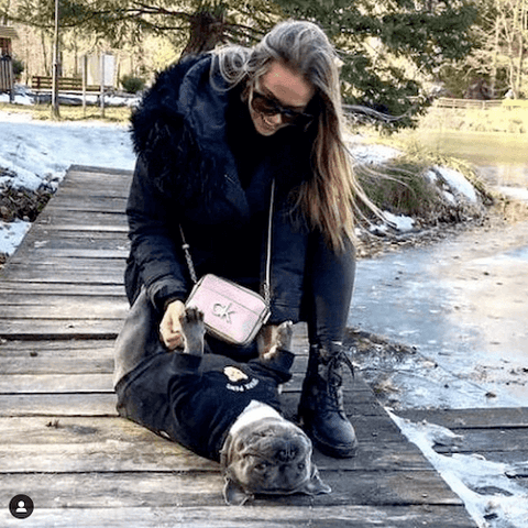 Rocky the Grey Frenchie enjoying the great outdoors while wearing the Broken Teddy Bear Dog Hoodie in Black.
