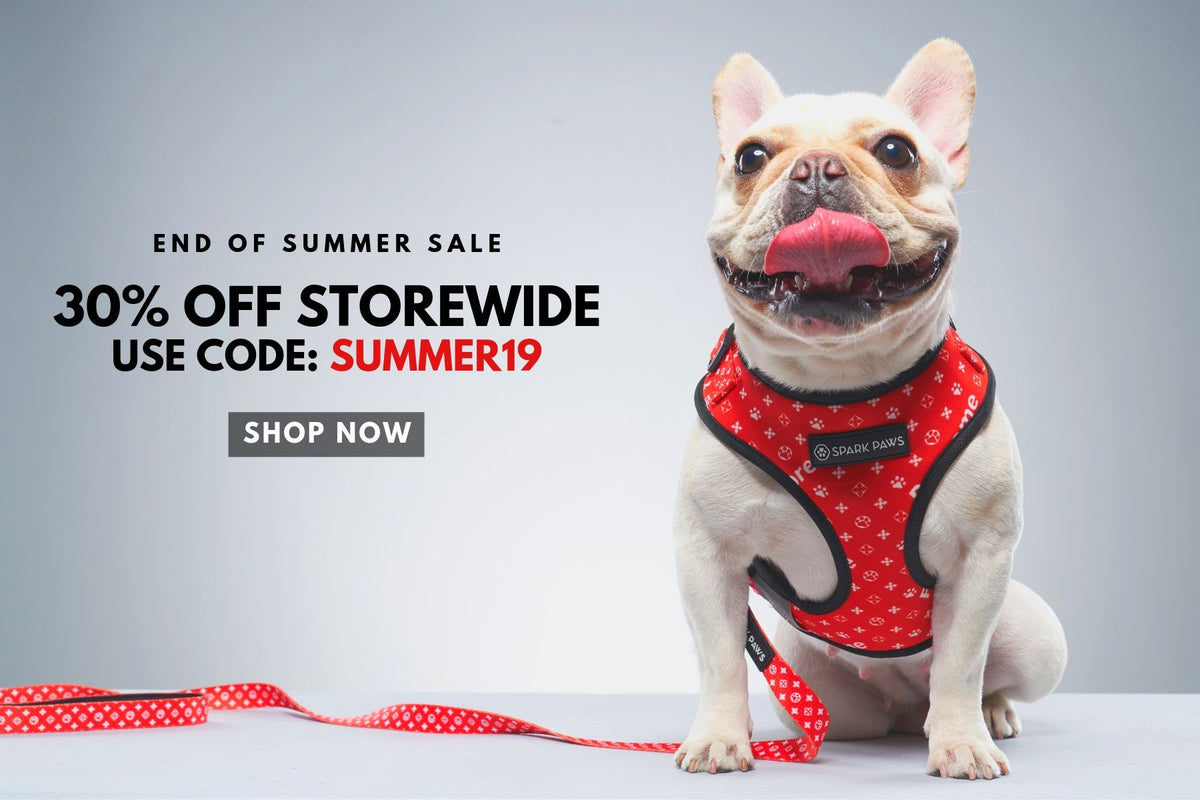 SPARK PAWS | Dog Clothes, Collars, Harness, Leash, Beds