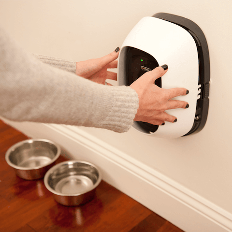 The PetChatz HDX is installed at the best height for a video call with your dog.