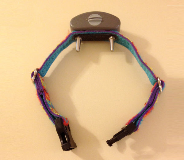 A typical shock collar