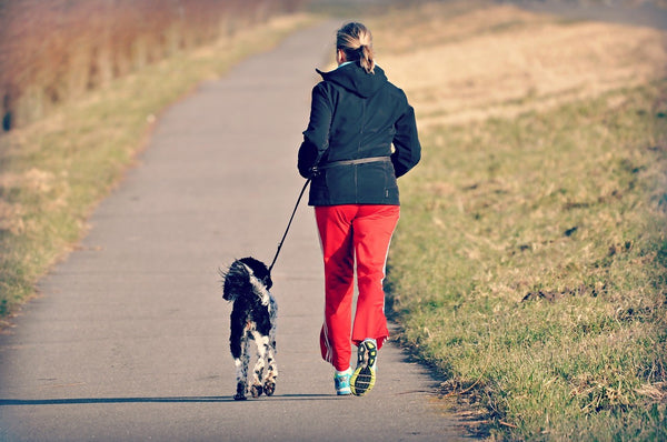 A woman jogging with her dog