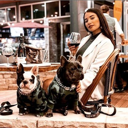 @xcuse.my.frenchie pups enjoying some al fresco time wearing Spark Paws Cuban Link Collars in silver and Dog Hoodies.