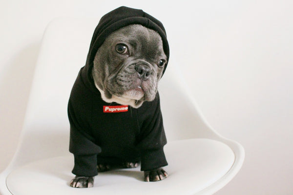Pupreme Dog Hoodies for Frenchies