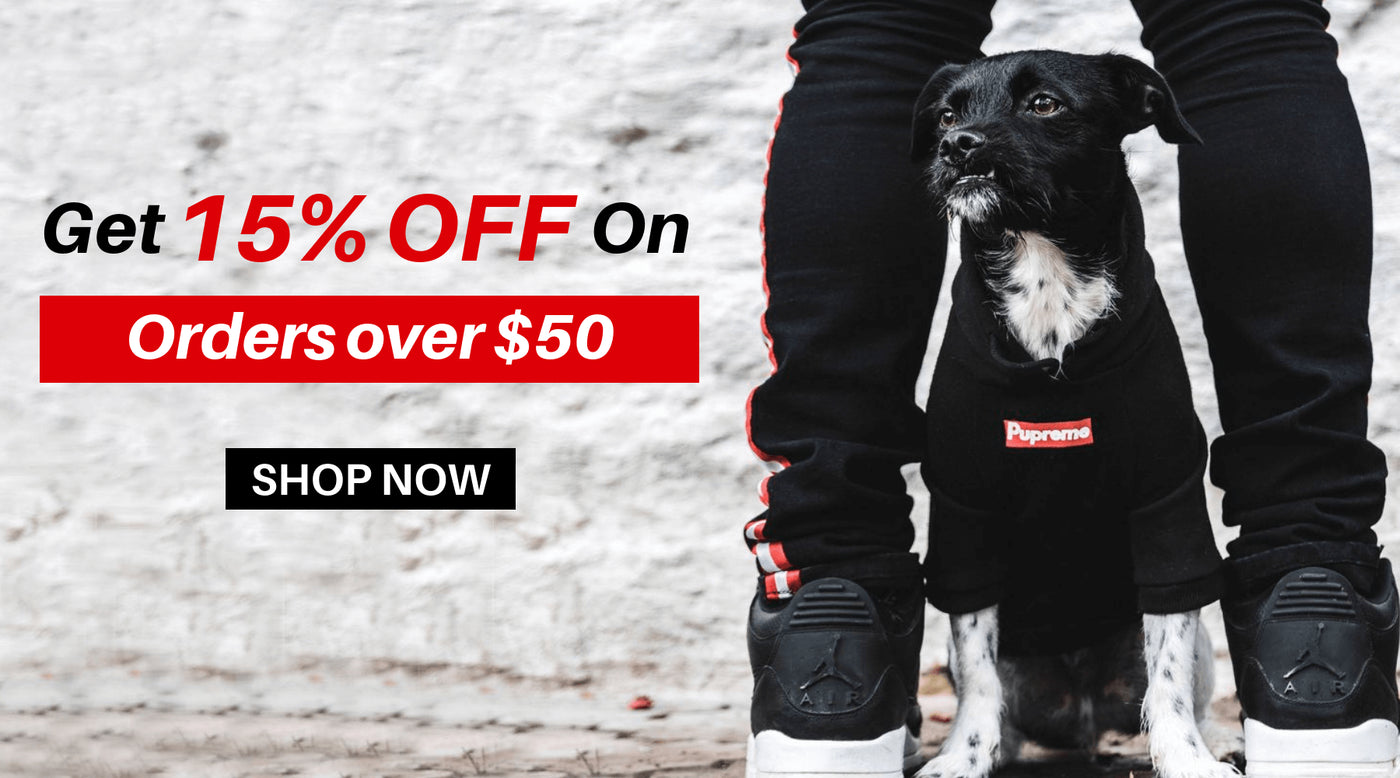 Icon Dogwear Streetwear For Dogs Hypebeast Dog Clothes