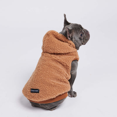 balenciaga dog hoodie, pawlenciaga dog hoodie, dog hoodie, cool dog hoodie, designer, streetwear for dogs, urban, icon dogwear, hypebeast dog clothes, hype dog, dog swag shop, french bull dog clothes, clothes for small dogs, cute dog clothes, best clothes for dogs