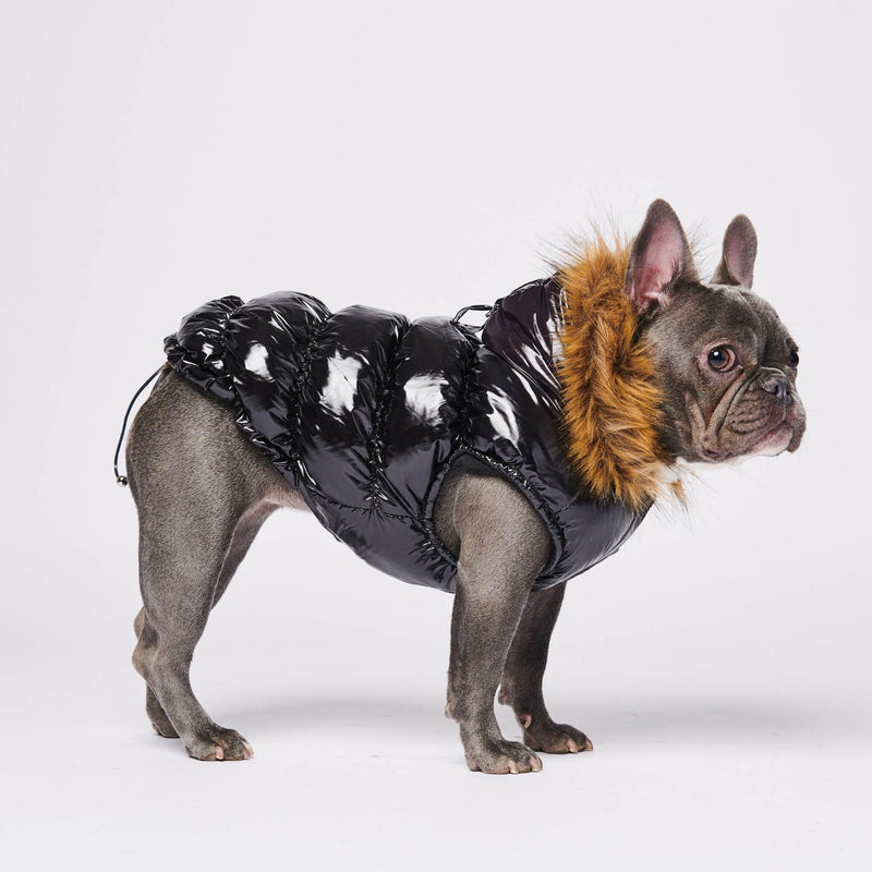 Black Puffer Jacket for Dogs