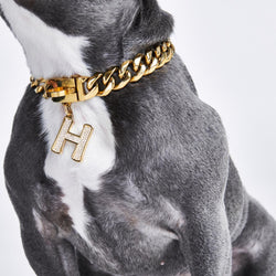 Gold initial letter pendant jewelry tag for dogs, pet ID tag for small and big dogs, bling for dogs, charms for dogs