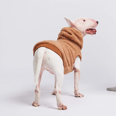 pupreme, pupreme dog hoodie, supreme dog hoodie, supreme dog sweater, dog hoodie pupreme, pupreme dog clothes, best dog hoodie, streetwear for dogs, urban, icon dogwear, hypebeast dog clothes, hype dog, dog swag shop, pawmain, freshpawz french bull dog clothes, clothes for small dogs, cute dog clothes, best clothes for dogs