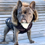 frenchie puffer jacket