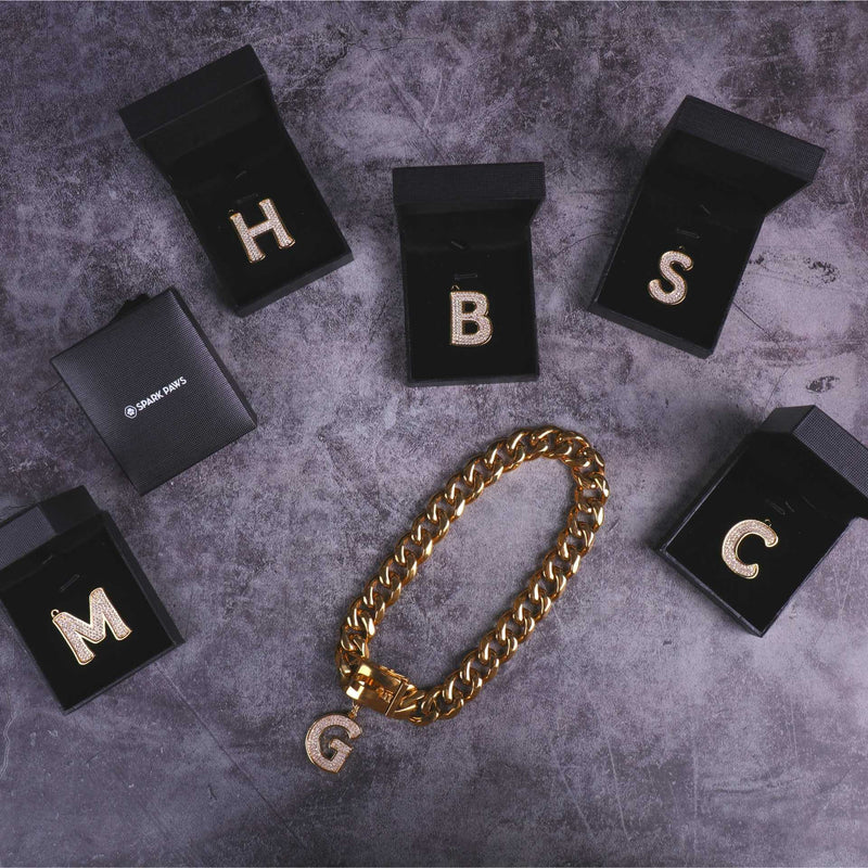 Gold Initial Letter Jewelry Tag for Dogs - M