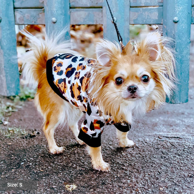 Leopard Dog Bomber Jacket