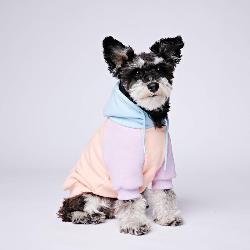 Cotton Candy Dog Hoodie