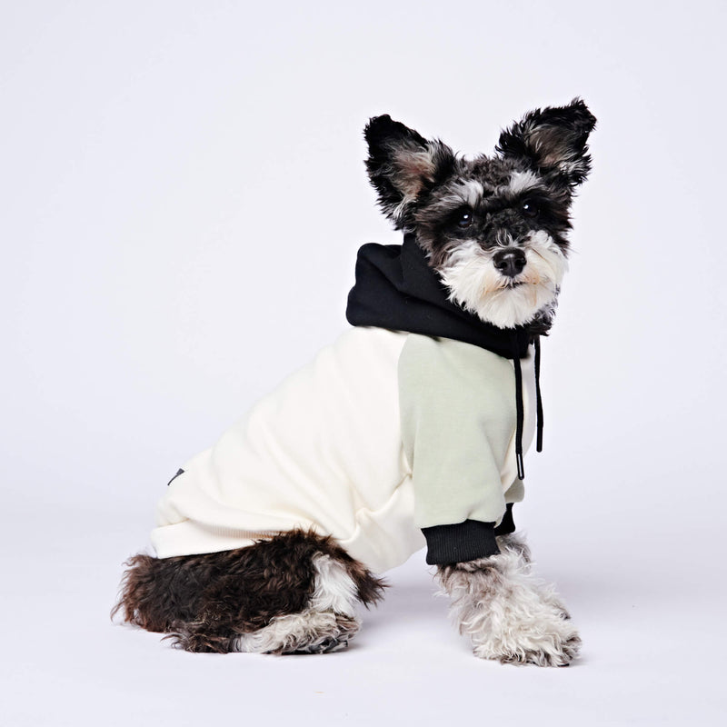 Color Block Dog Hoodie - Black, Olive & Cream