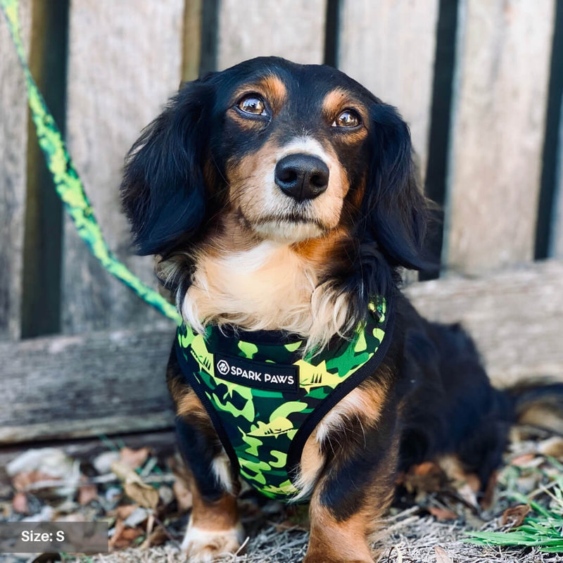 Shark Monster Mesh Harness - Green Camo