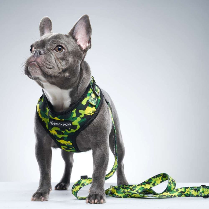 Green Camo Shark Monster French Bulldog Leash and Harness